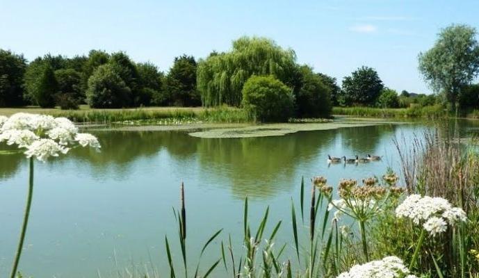 Cottenham Park 949x720_0
